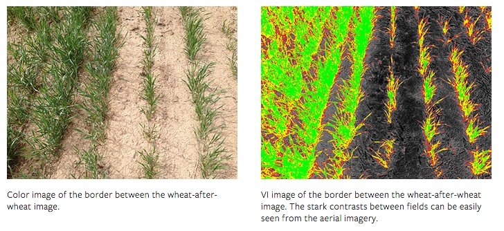 Agriculture Drone Buyers Guide - NDVI images of winter wheat field courtesy Agribotix