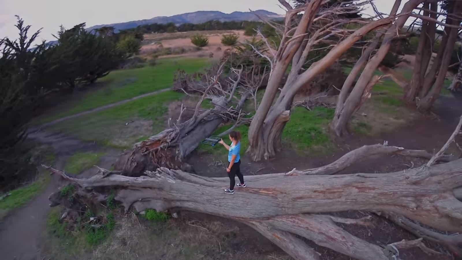 Skydio R1 drone takeoff